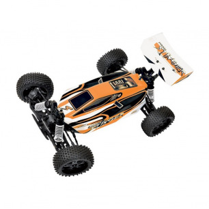 Buggy Pirate Stinger Brushless de T2M