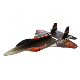 Avion indoor F-22 Raptor de RC Factory - Env: 73cm