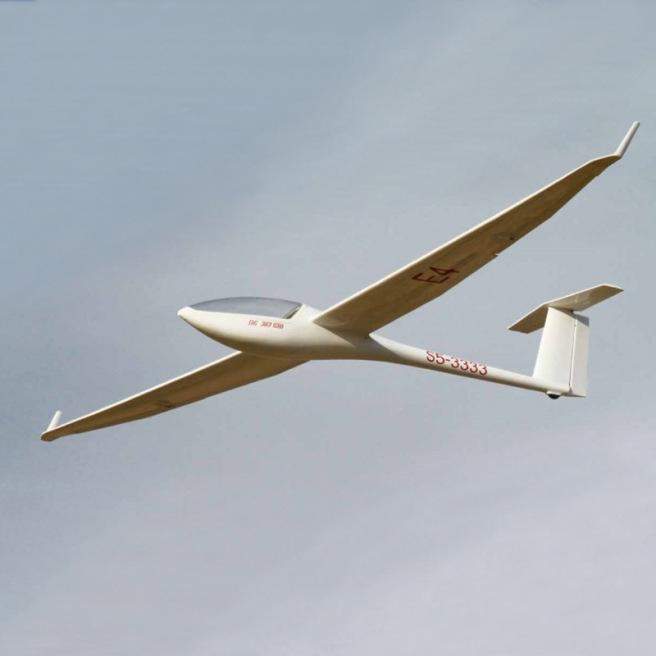 Planeur DG303 de Royal Model - env 3.75 m