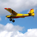"Avion Timber XL 110"" 30-50cc de Hangar 9"