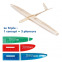 Planeurs Triple Speed, RES et Thermic de AeroNaut