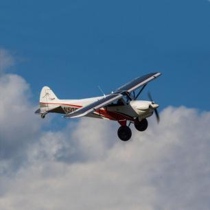 """Avion CubCrafters XCub 60cc ARF, 116"""" de Hangar9"""