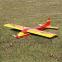 Avion Rasant Speed Kit bois de Robbe