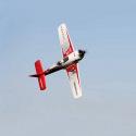 Avion RaceWulf RR de Multiplex