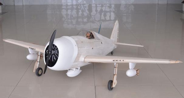 P-47 Thunderbolt Master Scale Kit Editio